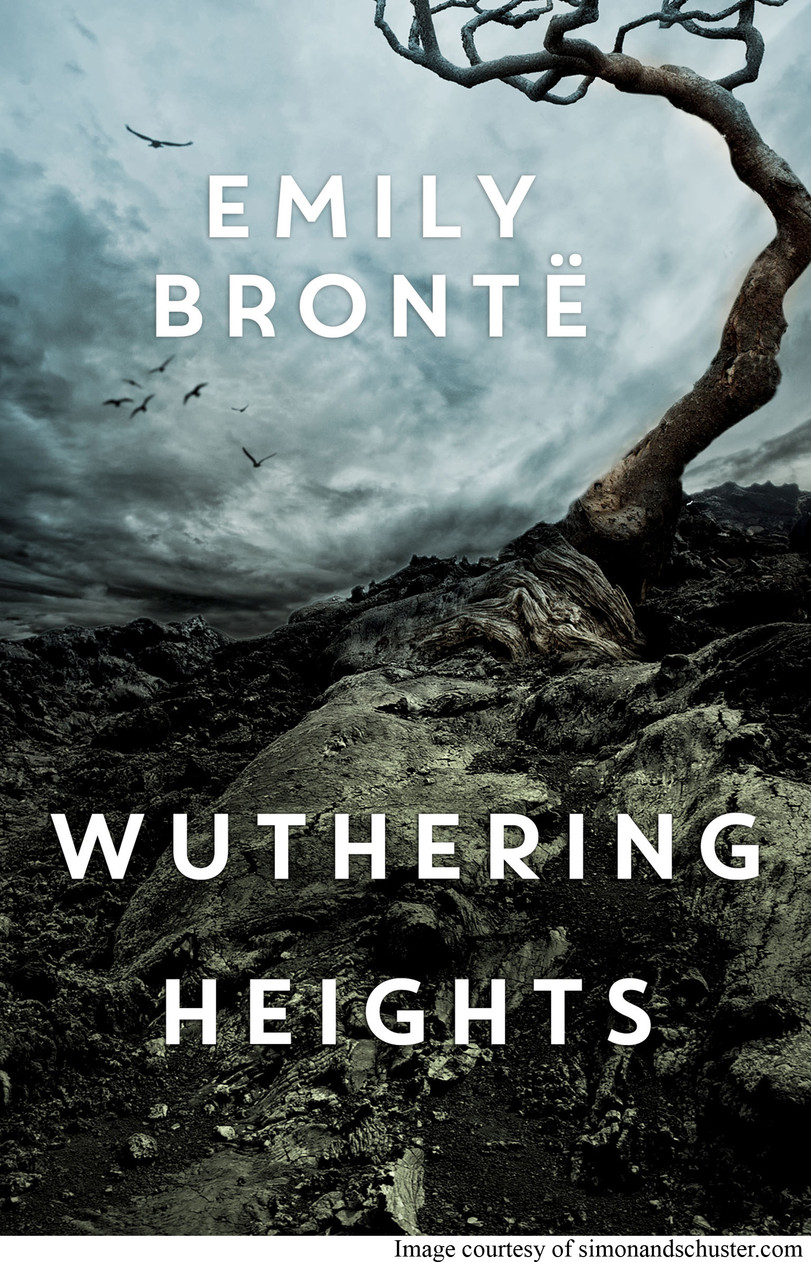 a summary of wuthering heights a novel by charlotte bronte Ver vídeo  emily brontë is best known for authoring the novel wuthering heights she was the sister of charlotte and anne brontë, also famous authors.